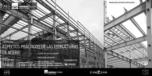 ASPECTOS PRÁCTICOS DE LAS ESTRUCTURAS DE ACERO: curso en línea con el Dr. Edgar Tapia