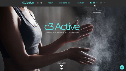 C3 Active