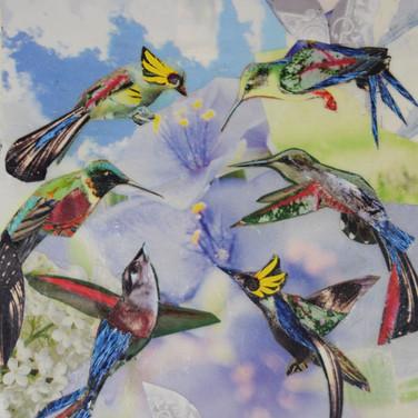 """""""Hello Birds"""" collage by Roxana Rojas-Luzon"""
