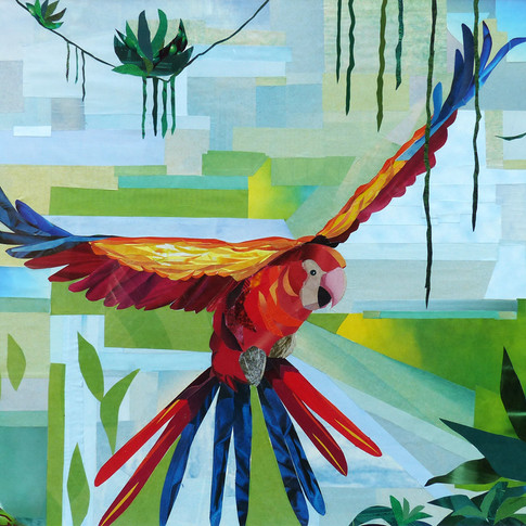 """""""Parrot"""" collage by Roxana Rojas-Luzon"""