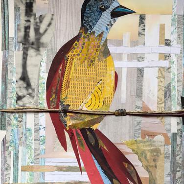 """Bird 5"" collage by Roxana Rojas-Luzon"