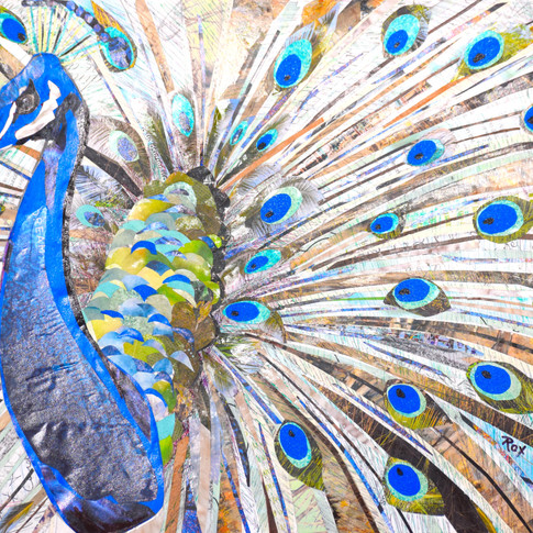 """""""Peacock"""" collage by Roxana Rojas-Luzon"""