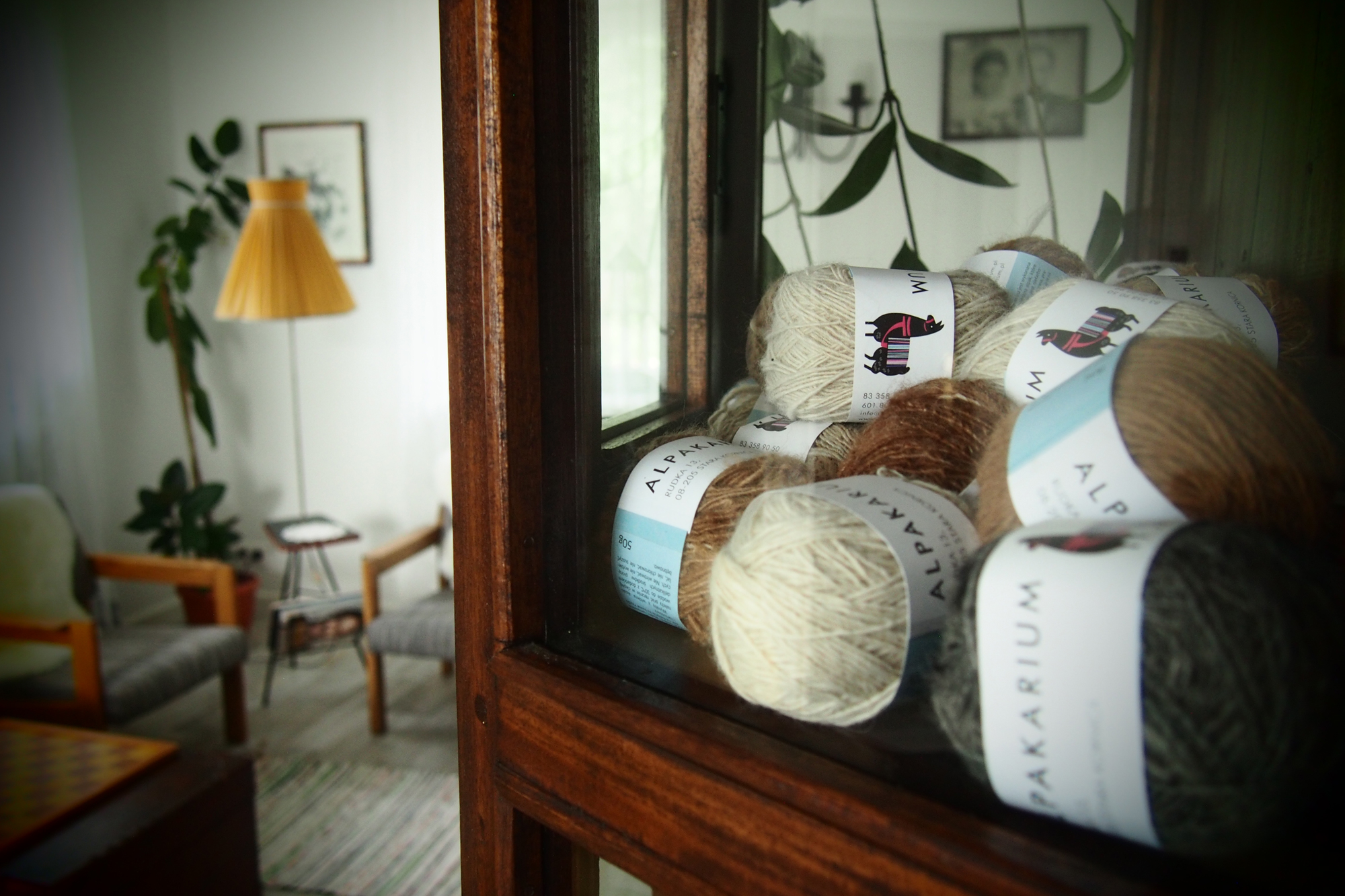 Wakacje z alpakami - pensjonat