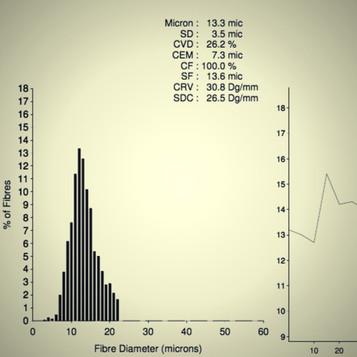 Dobra alpaka / Cechy włókna - Słynne mikrony