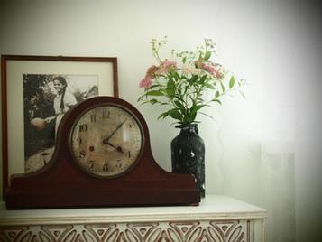 Pensjonat Alpakarium
