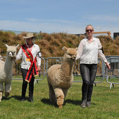 NZ Agricultural Show 2018