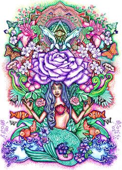 Mermaid illumination