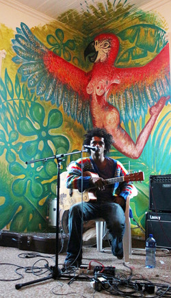 mural guacamaya bird party
