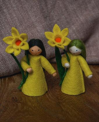 Ambrosius Daffodil Fairies