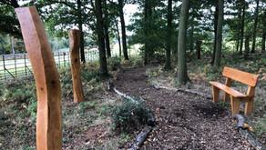 Memorial Wood, Bradgate Park.