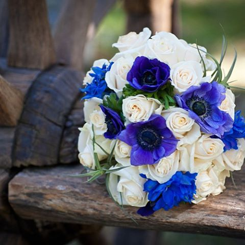 #anemone #tsillandsia #roses #somethingblue #doubleeagleresortandspa #junelakewedding #mammothweddin