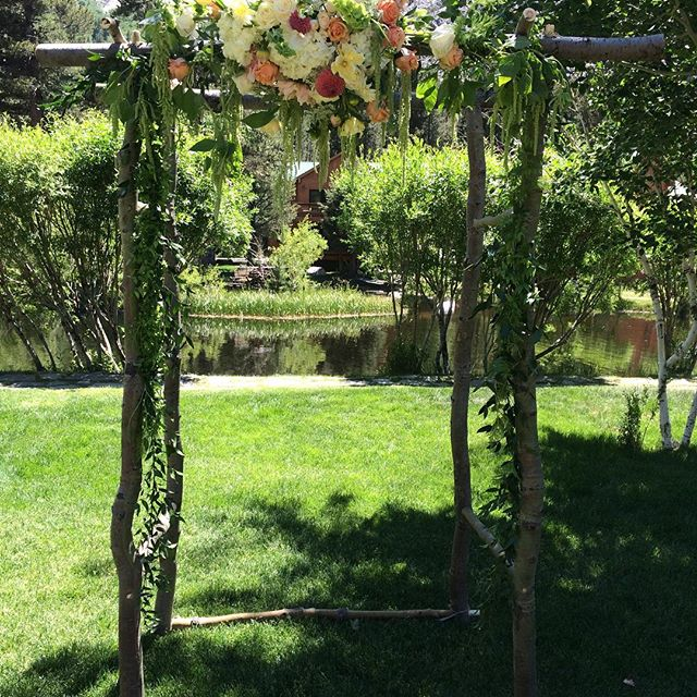 #mammothweddings #mammoth #mammothstories