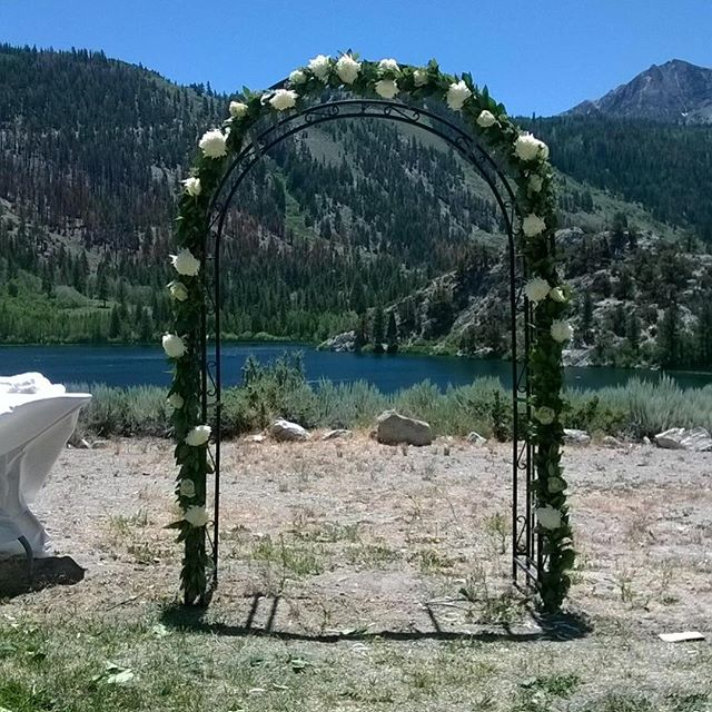 #mammothstories #mammothweddings #mammoth #redlilyfloral