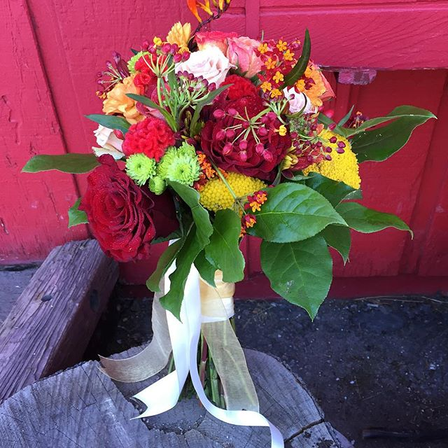 #mammothbride #mammothweddings #mammothstories #fallwedding #fallcolor #dahlia  #heartsrose #convict
