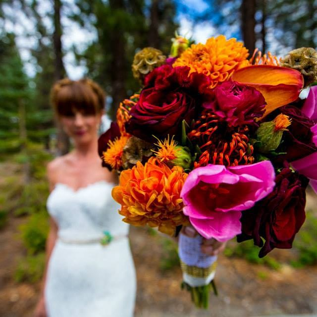 #mammothweddings #mammothstories #rusticchicwedding #rusticchic #haydencabin #redlilydesign #mammoth