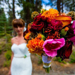 #mammothweddings #mammothstories #rusticchicwedding #rusticchic #haydencabin #redlilydesign #mammoth