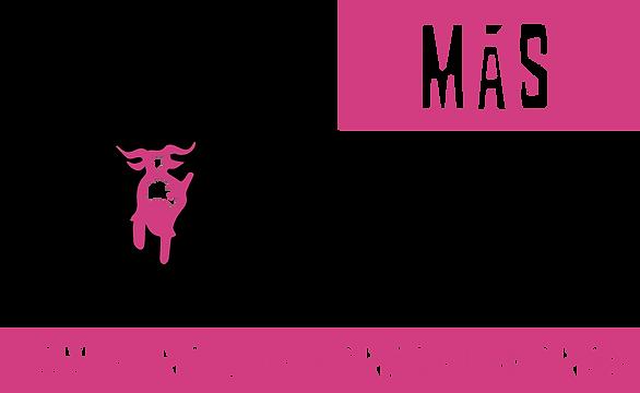 NUEVO LOGOTIPO TOP MAS DANCE