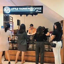 Retail - Grocery & Pharmacy Franchise Philippines, Little Farmers Franchise Fee and Investment, Wholesaling and retailing of locally roasted coffee beans business