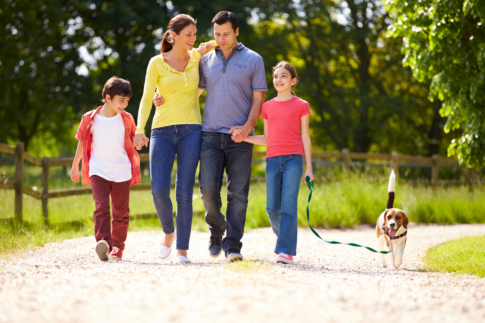 The Family Dog® Package