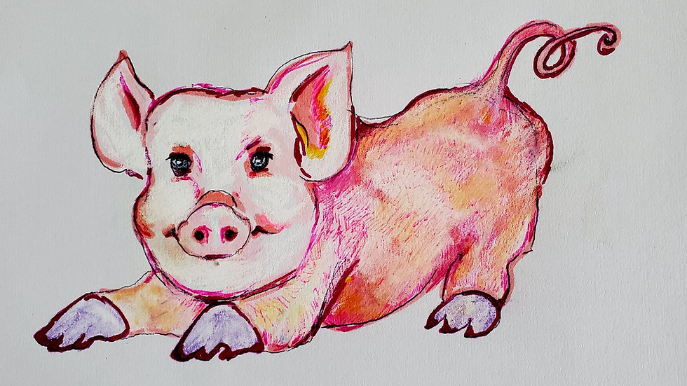 Gay Zoo- Pig