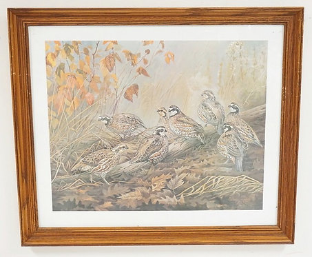 PENCIL SIGNED *JIM FOOTE* WOODLAND PRINT OF QUAIL. 26 X 20 3/4 INCHES.