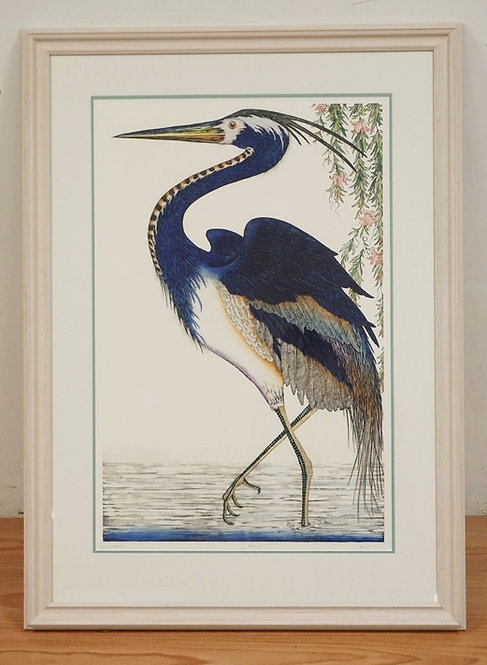 LARGE COLORED ETCHING TITLED *LOUISIANA HERON*. EDITION #332/2000. PENCIL SIGNED