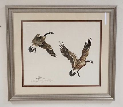 ALICE TAYLOR *NORTH WIND* PRINT OF TWO LANDING GEESE. EDITION #134/500. 24 X 20