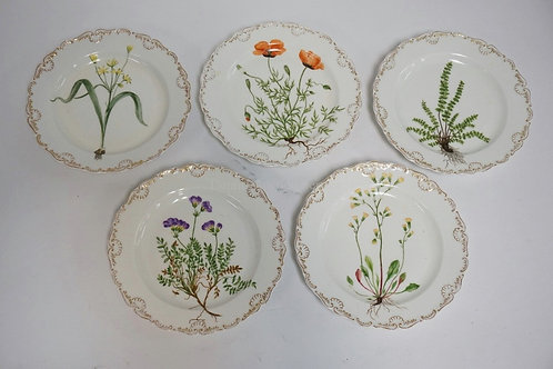 LOT OF 5 HAND PAINTED MEISSEN PLATES. EACH DECORATED WITH A DIFFERENT PLANT OR F
