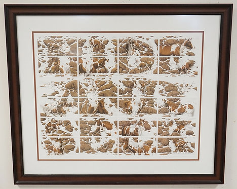 BEV DOOLITTLE *HIDE AND SEEK* NATIVE AMERICAN THEMED PRINT. EDITION #908/25000.