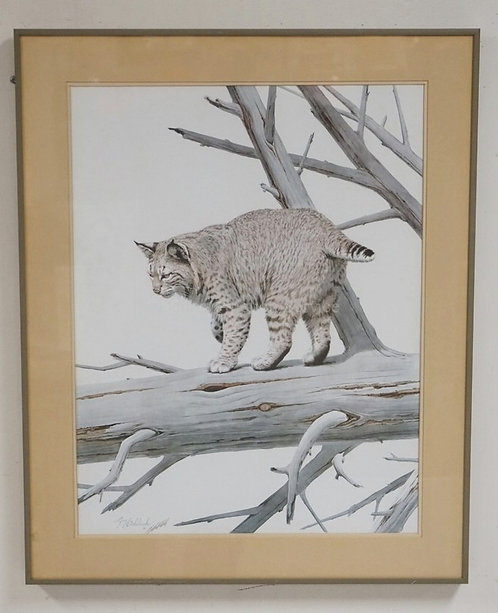 PENCIL SIGNED BOBCAT PRINT BY GUY COHELEACH. 23 1/4 X 28 3/4 INCH FRAME.
