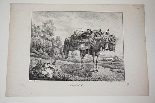 PAUL DE SAINT MARTIN (B. 1817) *ETUDE D'ANE* CRAYON LITHOGRAPH WITH SCRAPING. 22
