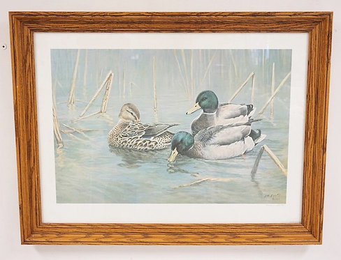 PENCIL SIGNED *JIM FOOTE* DUCK PRINT. 26 X 17 1/4 INCH IMAGE. LIMITED EDITION.
