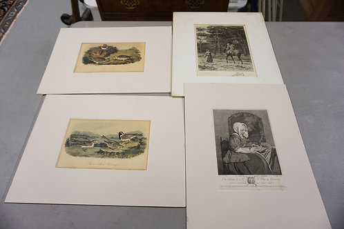 GROUP OF 4 ENGRAVINGS INCLUDING AUDUBON. LARGEST 12 IN X 16 1/4 IN
