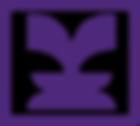 insightfounation logo.png