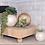 Thumbnail: Small Capiz Round Globe Vase