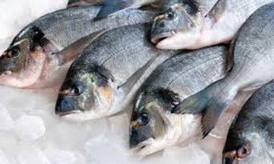 poisson d'eau