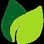 vector-leaf-png-4.png