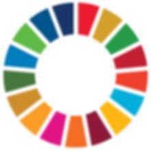 SDG Wheel.webp