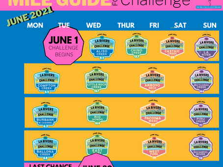 Earn the Badges: Complete the Challenge