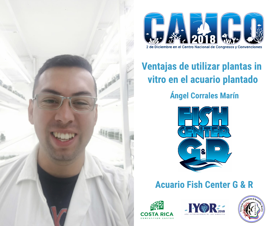 Camco Charla Fish Center