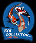koi collector2.jpeg