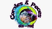 corales y peces.jpeg