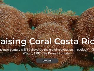 Reforestando y Restaurando los Arrecifes Nacionales