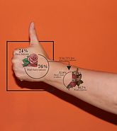 Loyola Phoenix Tattoo Infographic