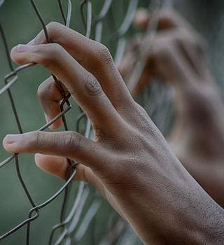 fence-2163951__340 - Copie.jpg