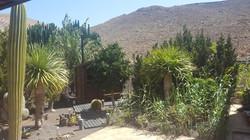 Garten mit Sauna