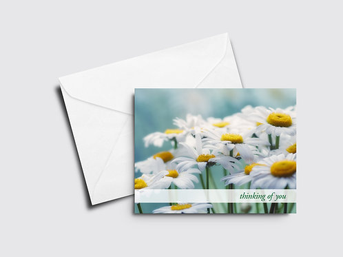 Daisies Thinking of You Card