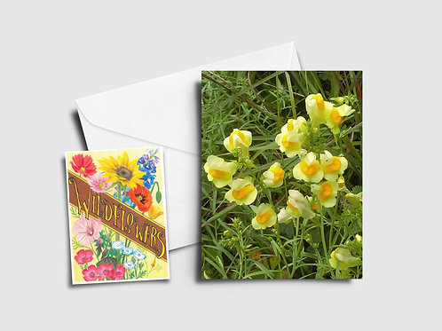 Butter and Eggs Flower Card