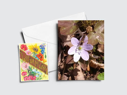 Rue Anemone Flower Card