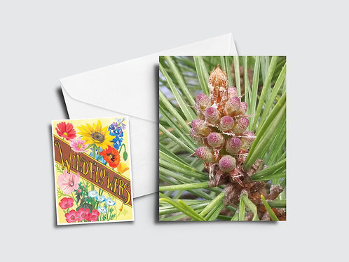 Red Pine Flower Card